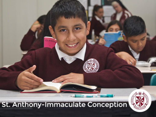 Saint Anthony – Immaculate Conception
